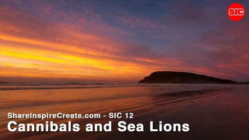 SIC 12 - Cannibals and Sea Lions