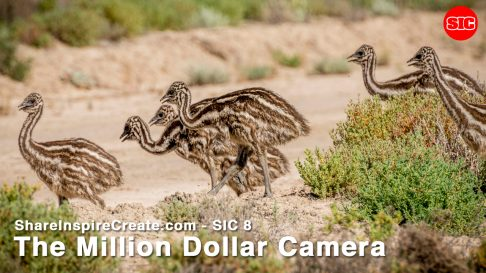 SIC 08 - The Million Dollar Camera