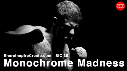 SIC 35 - Monochrome Madness